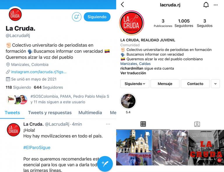 """""""La cruda realidad juvenil"""": propuesta de estudiantes de Comunicación Social de Umanizales para combatir la desinformación en redes sociales"""