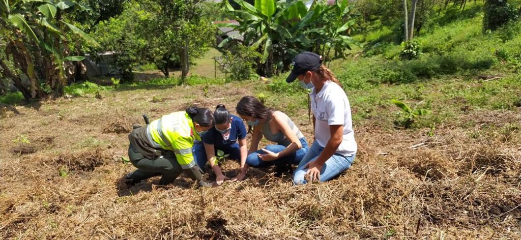 200 árboles más fortalecen la conservación del medio ambiente en Manizales