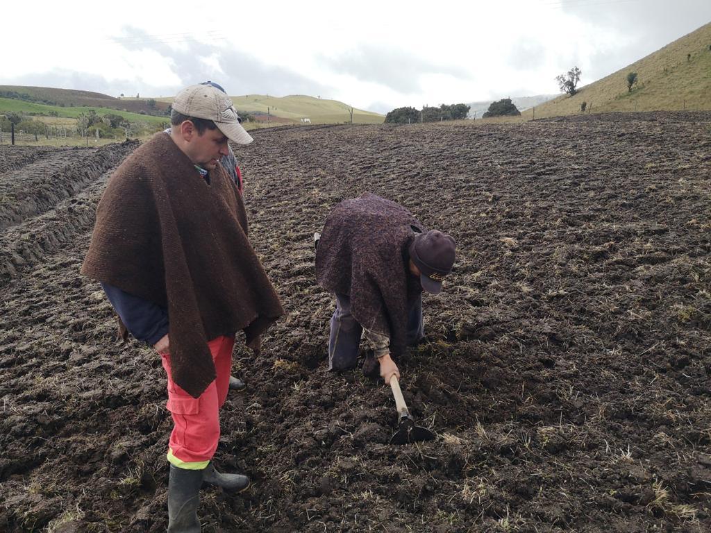 Alcaldía de Manizales diversifica cultivos en El Desquite