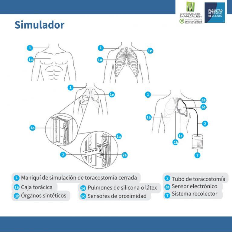 UManizales recibe nueva patente por simulador médico para practicar la introducción de tubo a tórax
