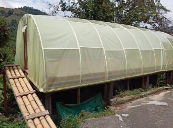 Alcaldía de Manizales apoya a los productores de café para mejorar sus cultivos