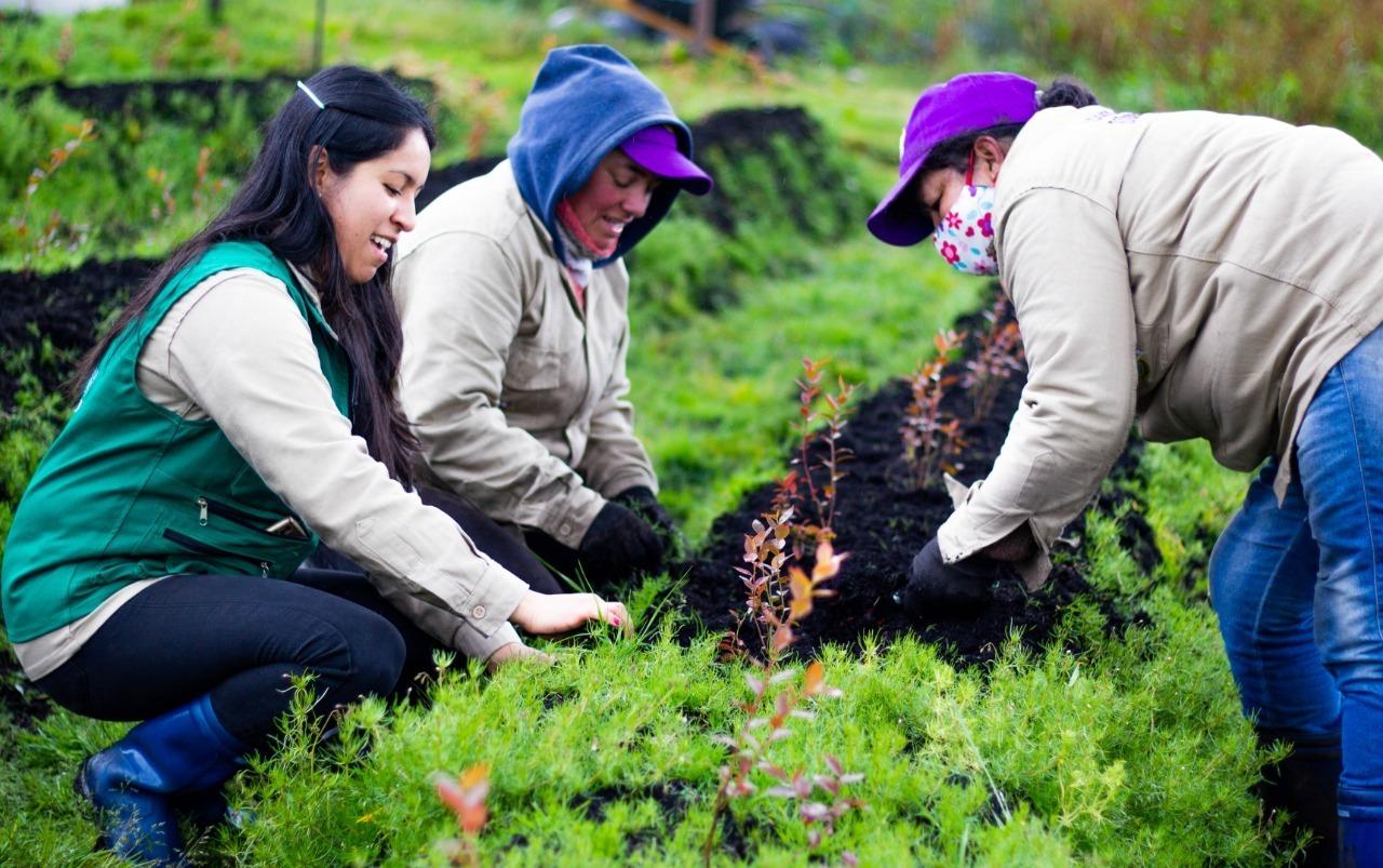 Cultivando el futuro del campo colombiano: $8 mil millones para el emprendimiento femenino en el sector rural