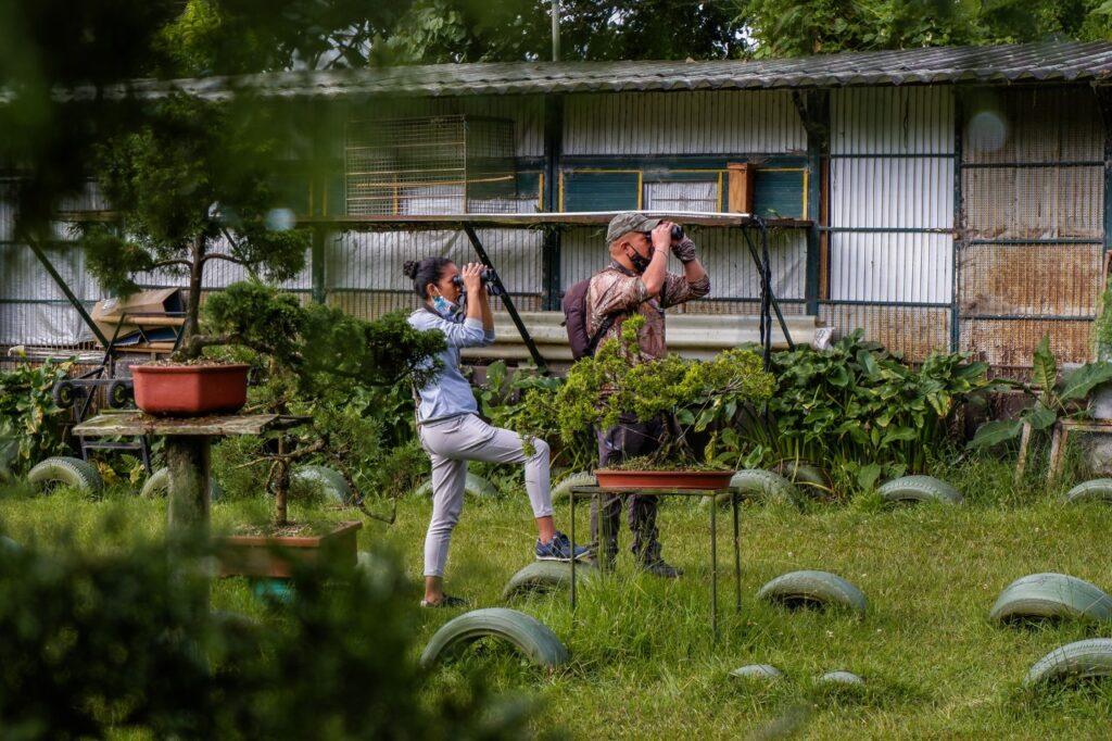 Durante el mes de septiembre disfruta de los avistamientos de aves guiados por la Red de Ecoparques