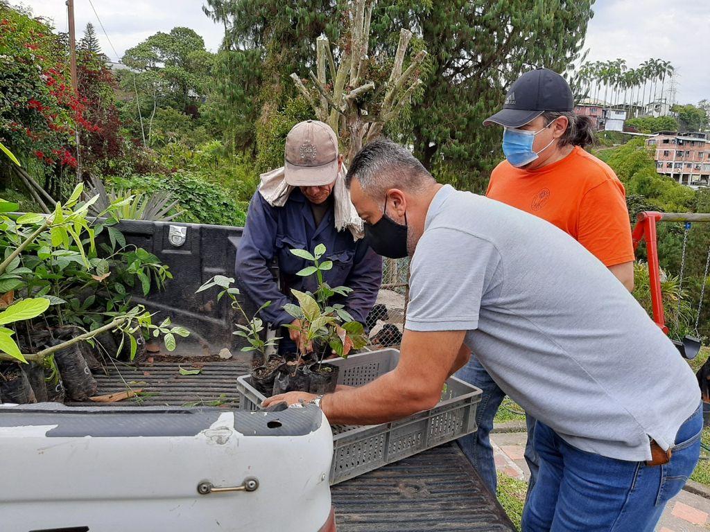 Por una Manizales + Verde, 7 mil 264 árboles ha sembrado Alcaldía de Manizales para cuidar los recursos hídricos